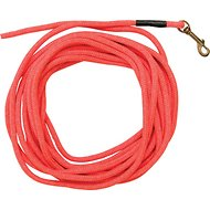SportDOG Check Cord Dog Leash, Orange, 30-ft
