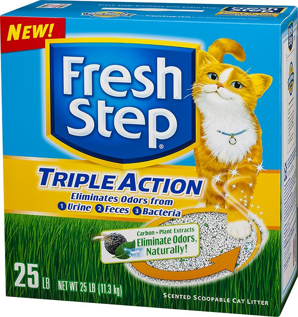 an examination of the two cat advertisements from fresh step and zyrtec A two-month-old mixed-breed cat the fresh step's commercial on the fresh step youtube channel maru has also been featured in advertisements.