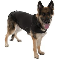 Anxiety Wrap Pressure Wrap for Dogs, Medium