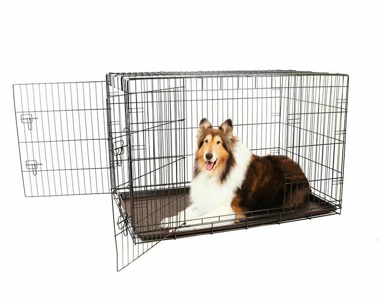 Carlson Pet Products Secure Amp Compact Double Door Wire Dog