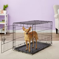 Carlson Pet Products Secure & Compact Single Door Wire Dog Crate, Medium