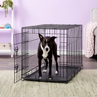 Carlson Pet Products Secure & Compact Single Door Wire Dog Crate, Intermediate