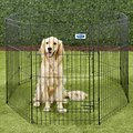 Petmate 8 Panel Wire Exercise Pen with Door, Black