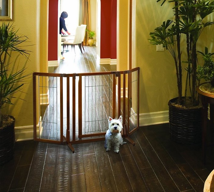 Richell Premium Plus Freestanding Gate For Dogs Amp Cats Chewy Com