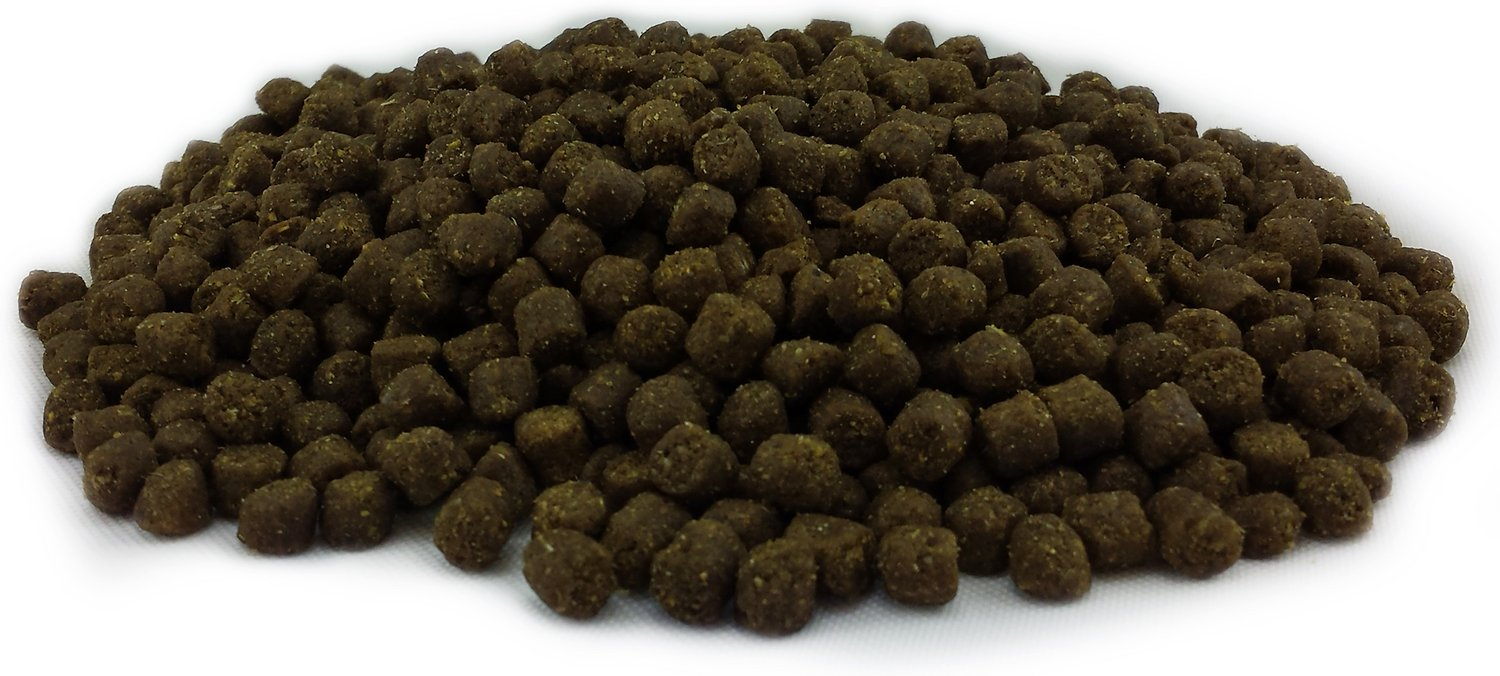 Canine Caviar Holistic Dog Food Reviews