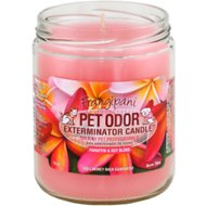 Pet Odor Exterminator Frangipani Deodorizing Candle, 13-oz jar