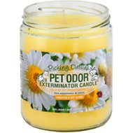 Pet Odor Exterminator Picking Daisies Deodorizing Candle, 13-oz jar