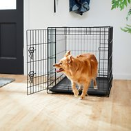 Frisco Fold & Carry Single Door Dog Crate, 36-in