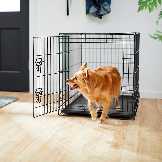 Frisco Fold Carry Single Door Dog Crate 36 In Chewy