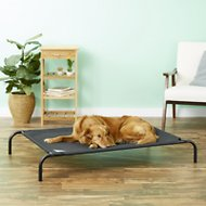 Coolaroo Steel-Framed Elevated Pet Bed, Charcoal, Large