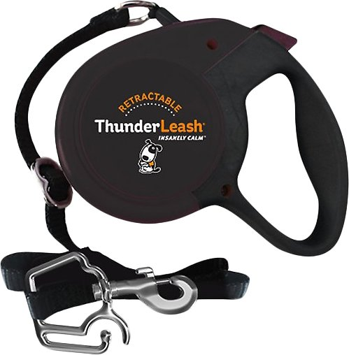 retractable dog leash large