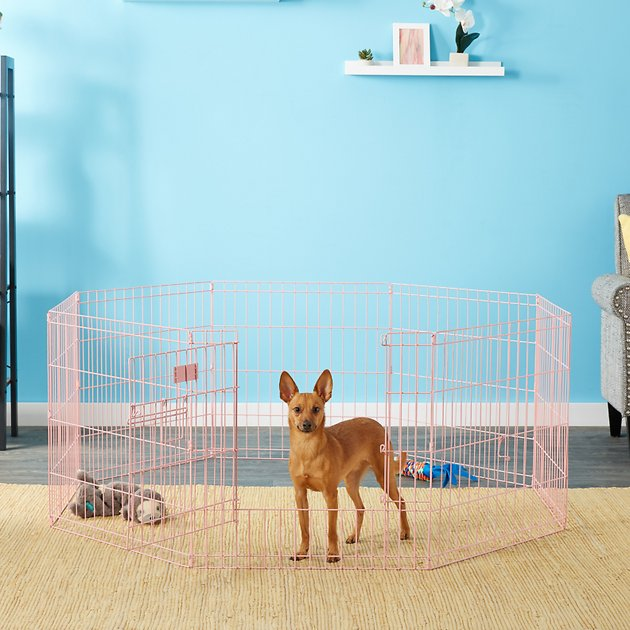 Midwest exercise pen 24 in with full max lock door pink for Dog exercise pen with door