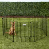 MidWest Exercise Pen with Full MAXLock Door, Black, 24-inch
