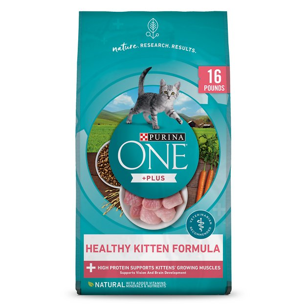 Purina One Cat Food Best Price