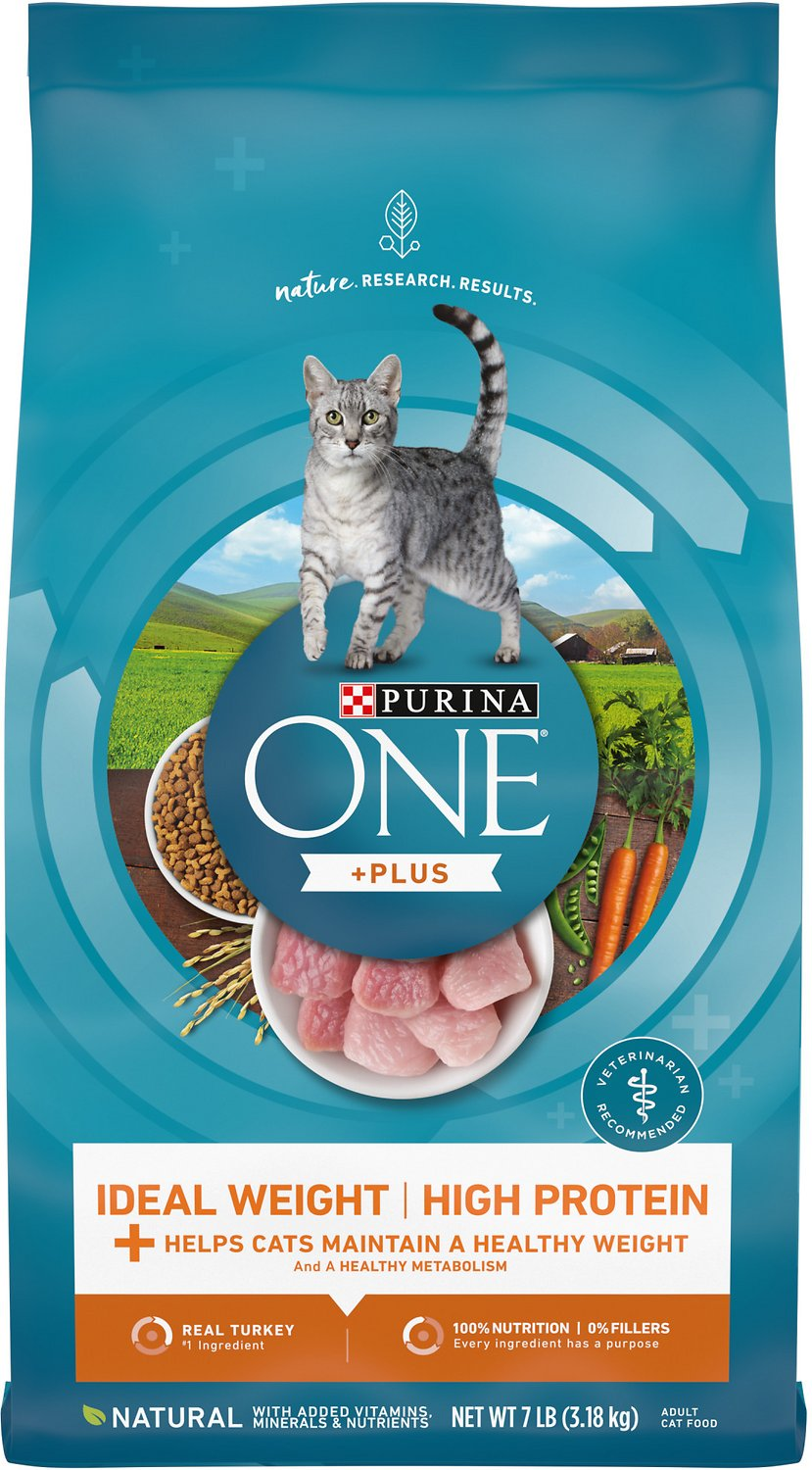 Purina One Healthy Metabolism Adult Premium Dry Cat Food
