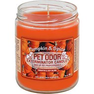 Pet Odor Exterminator Pumpkin Spice Deodorizing Candle, 13-oz jar