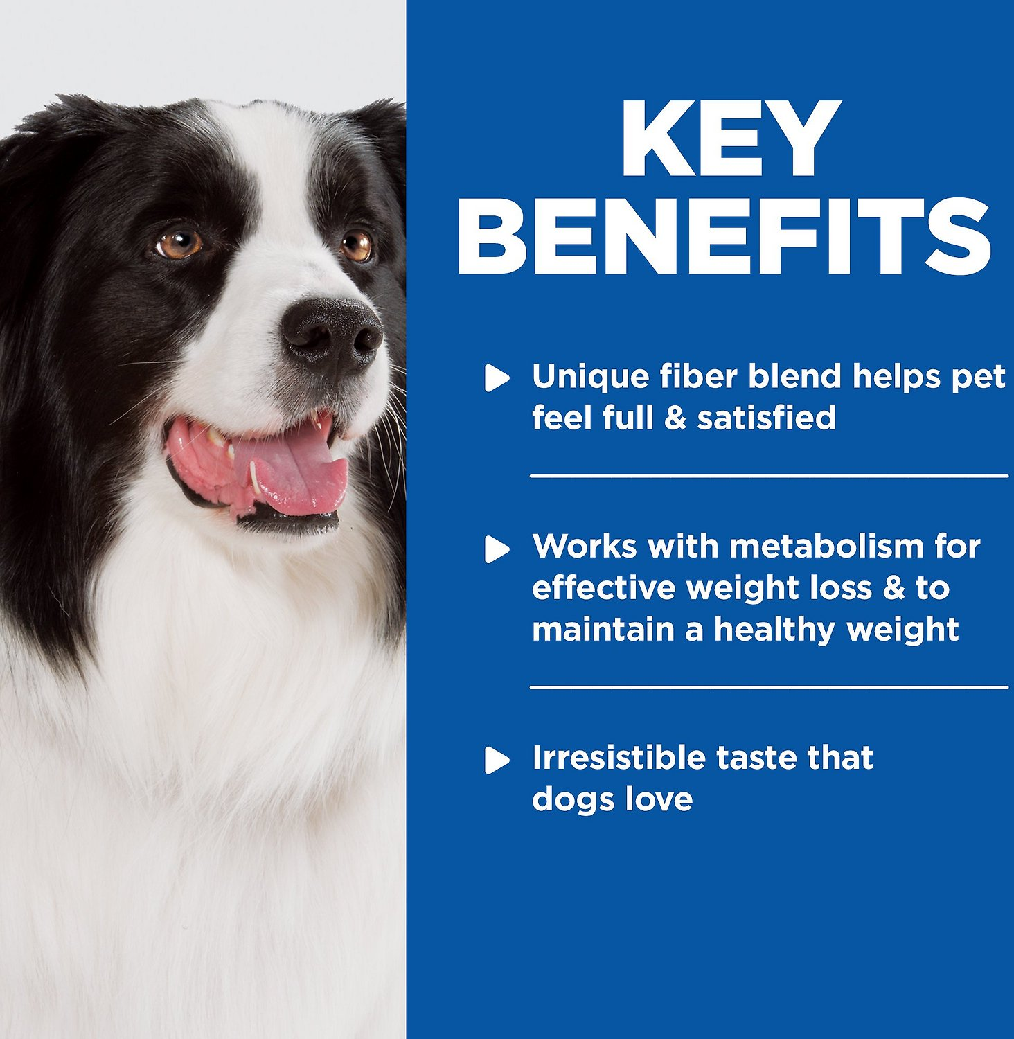 Hill S Weight Management Dog Food