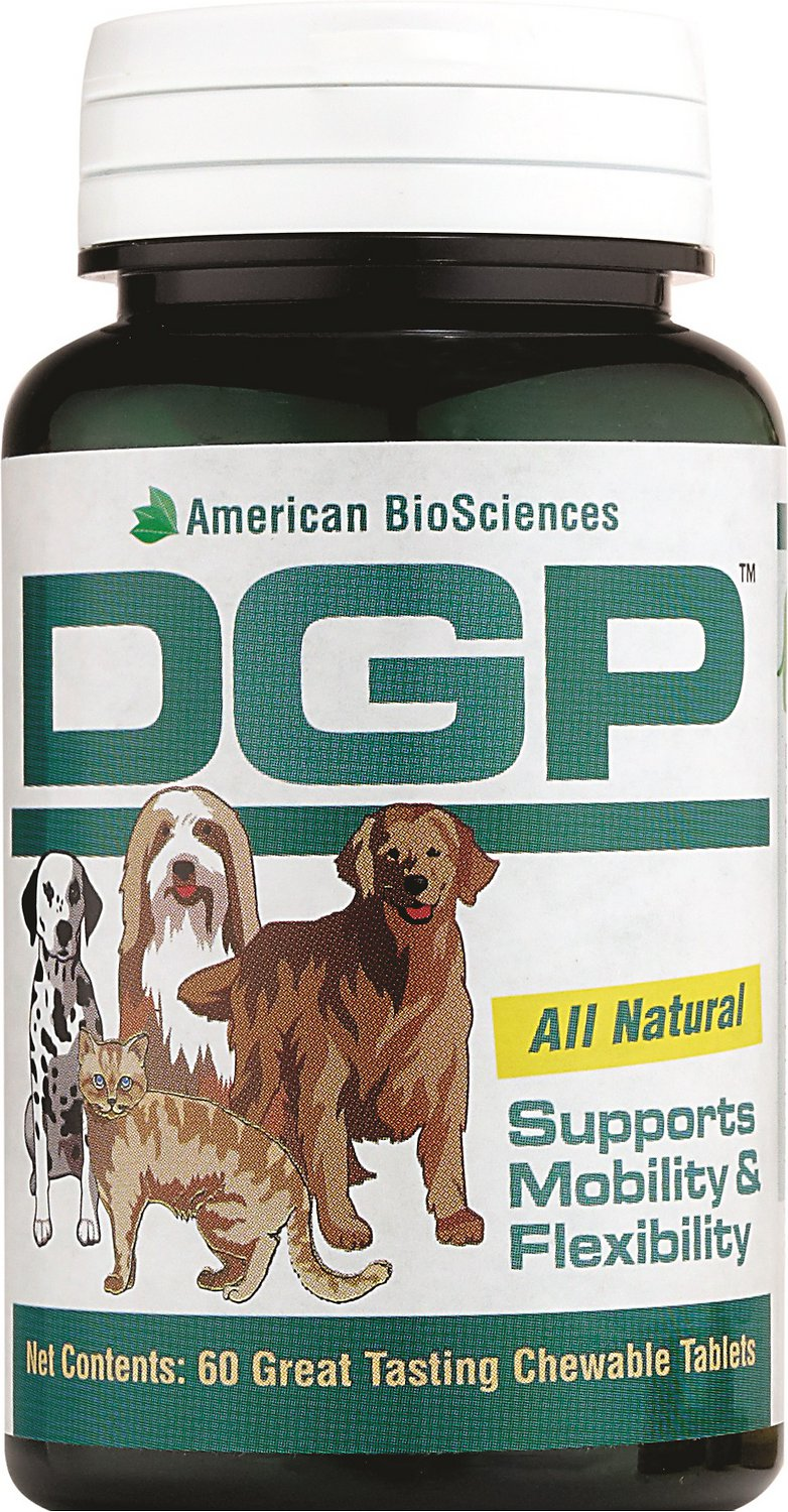 Dgp For Dogs Reviews