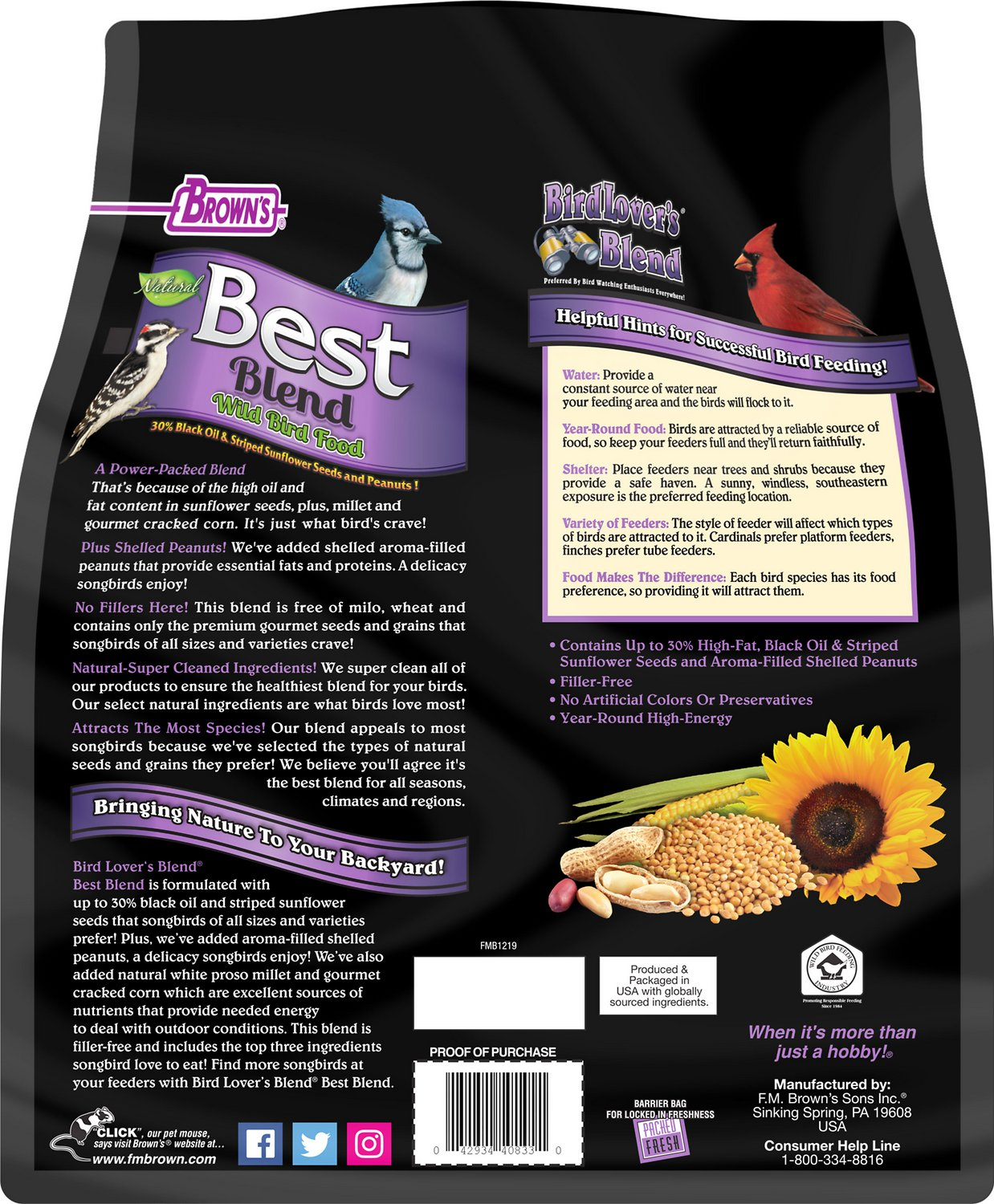 Suet & Fruit Feeder Songbird Essentials Seed
