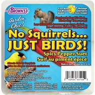 Brown's Garden Chic! No Squirrels... Just Birds! Spicy Pepper Suet Wild Bird Food, 11.25-oz tray