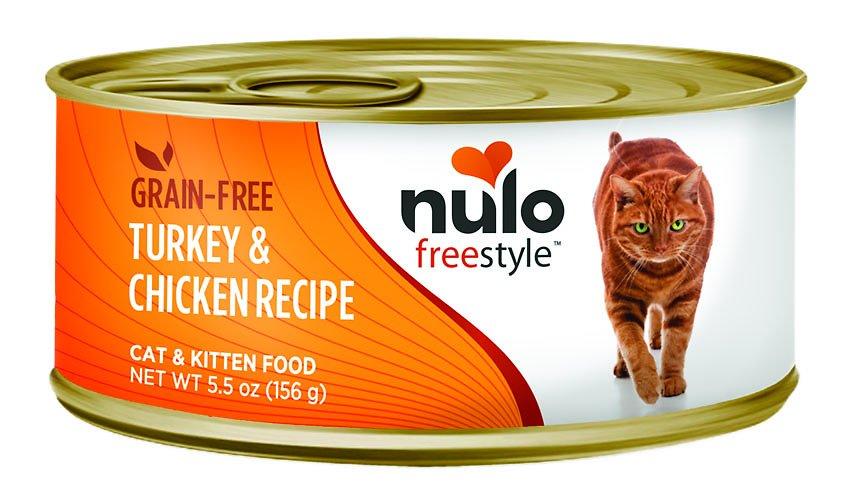 Refrigerated Cat Food Feeder | Cute Cats