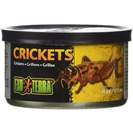 Exo Terra Crickets Reptile Food, 1.2-oz jar