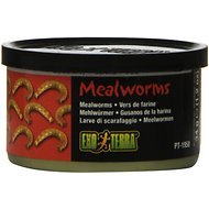 Exo Terra Mealworms Reptile Food, 1.2-oz jar