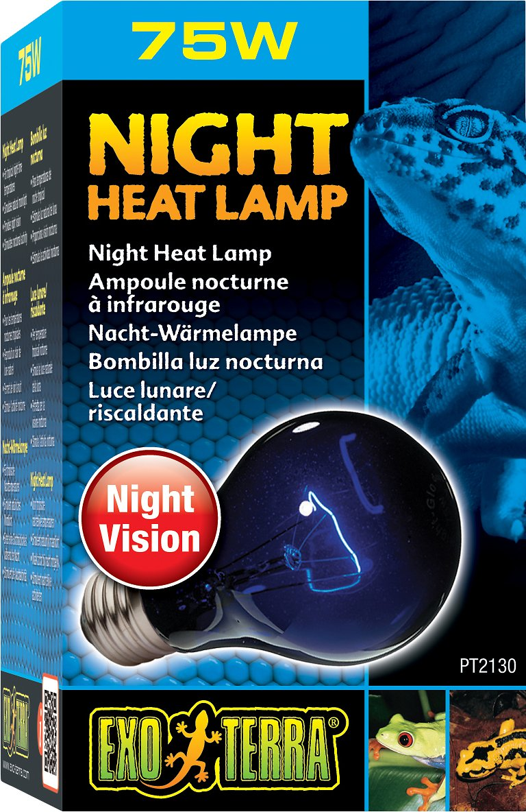 exo terra night heat lamp