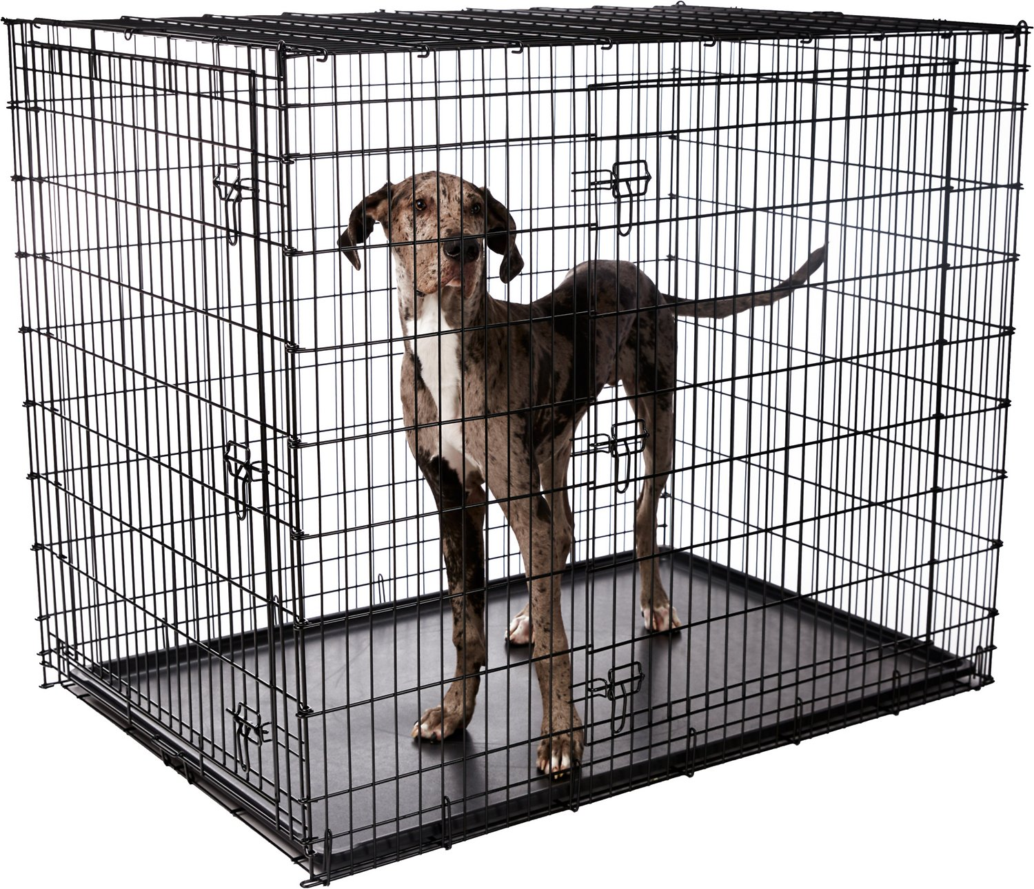 Frisco Xx Large Heavy Duty Double Door Dog Crate At Low