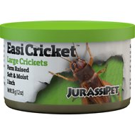 JurassiPet JurassiDiet EasiCricket Large Cricket Reptile Food, 1.2-oz can