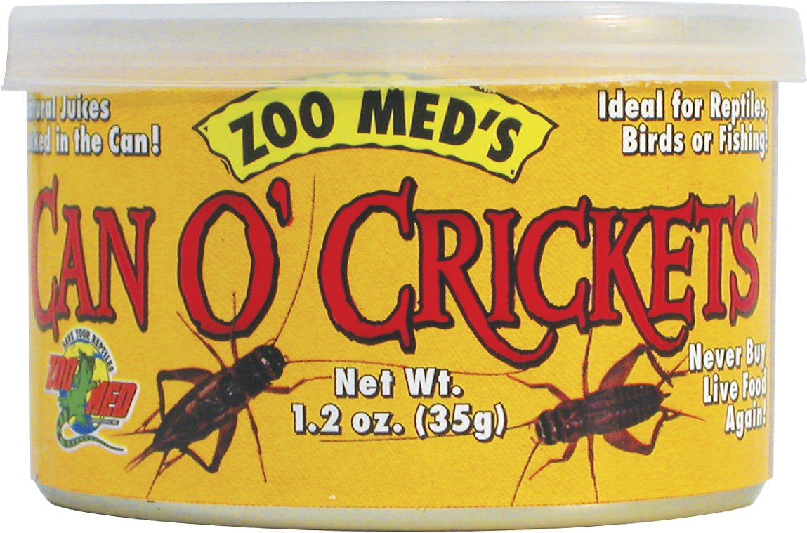 Image Led Feed Crickets To Reptiles 5