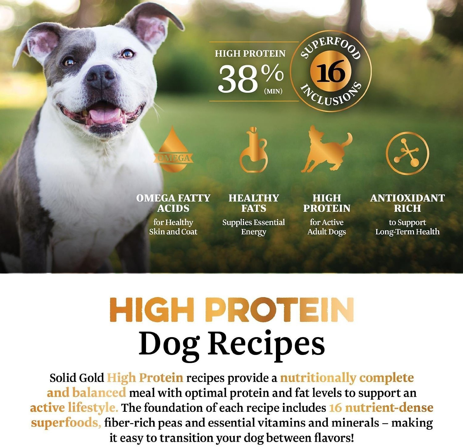 Solid Gold High Protein Grainfree Cold Water Salmon & Krill Meal Recipe  Adult Dry Dog Food