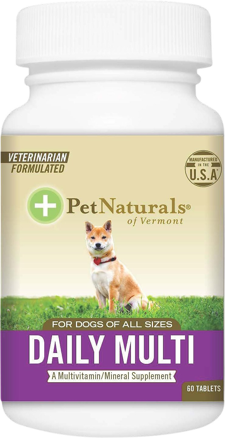 Best Multivitamin For Small Dogs