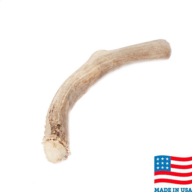 usa bones chews deer antler dog chew 9 5 inches. Black Bedroom Furniture Sets. Home Design Ideas