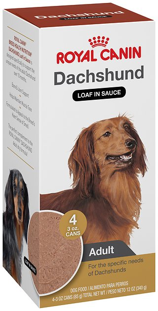 royal canin dachshund adult canned dog food 3 oz pack of 4. Black Bedroom Furniture Sets. Home Design Ideas