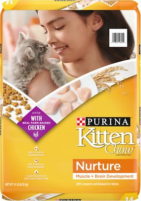 3. Kitten Chow Nurture Dry Cat Food