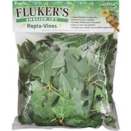 Fluker's English Ivy Repta-Vines, 6-ft