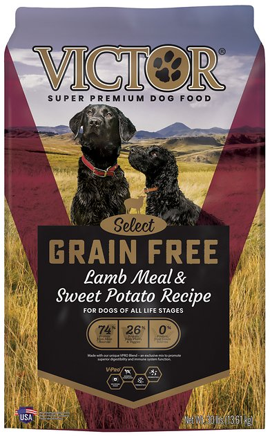 Victor Dog Food Reviews >> VICTOR Grain-Free Prairie Land Canine with Lamb Meal & Sweet Potato Dry Dog Food, 30-lb bag ...