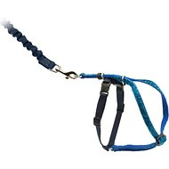 PetSafe Come With Me Kitty Glitter Harness & Bungee Cat Leash, Blue, Medium