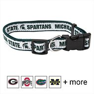 Pets First NCAA Dog Collar, Michigan State Spartans, Large