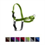 PetSafe Easy Walk Dog Harness, Apple Green, Petite