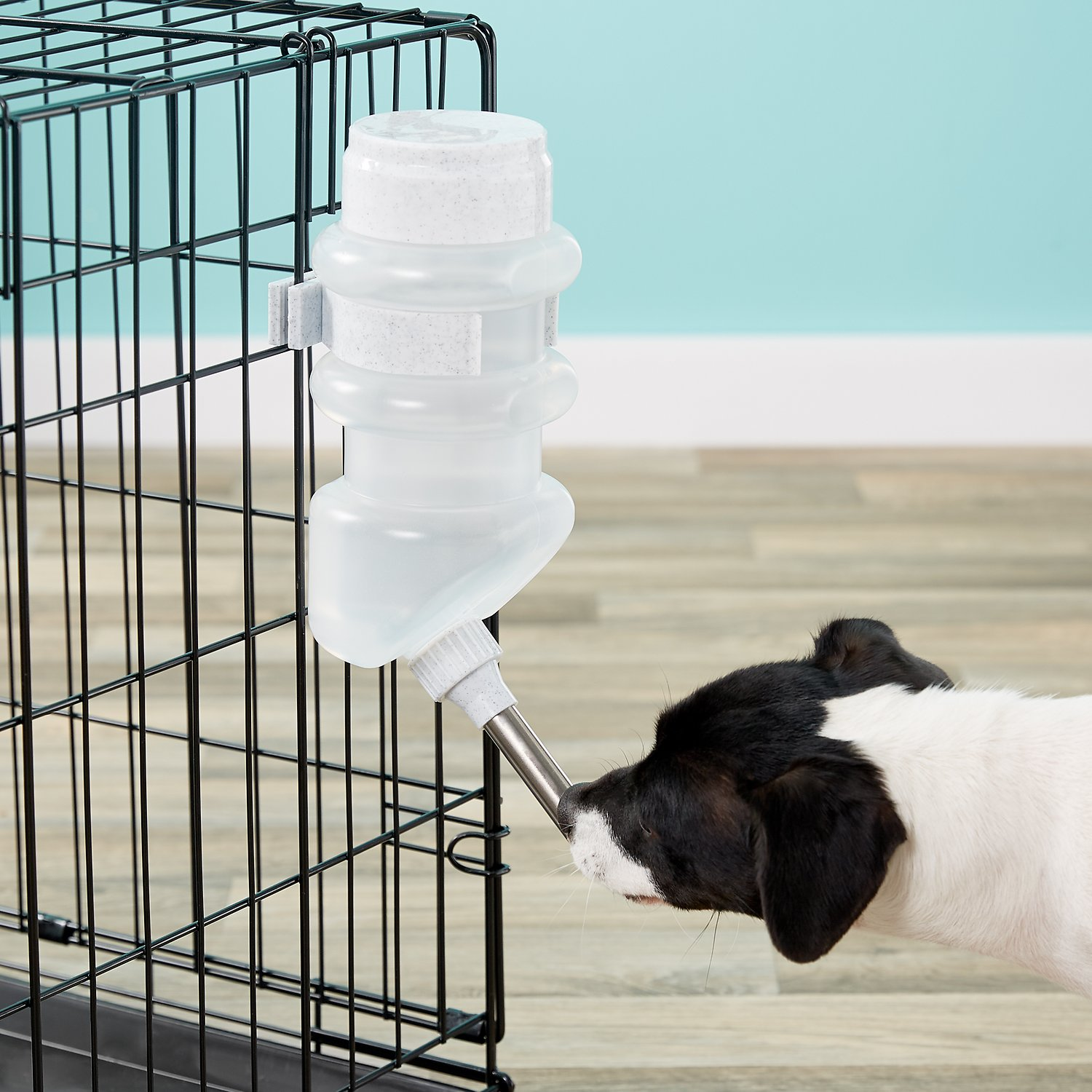 water bottles for dog crates
