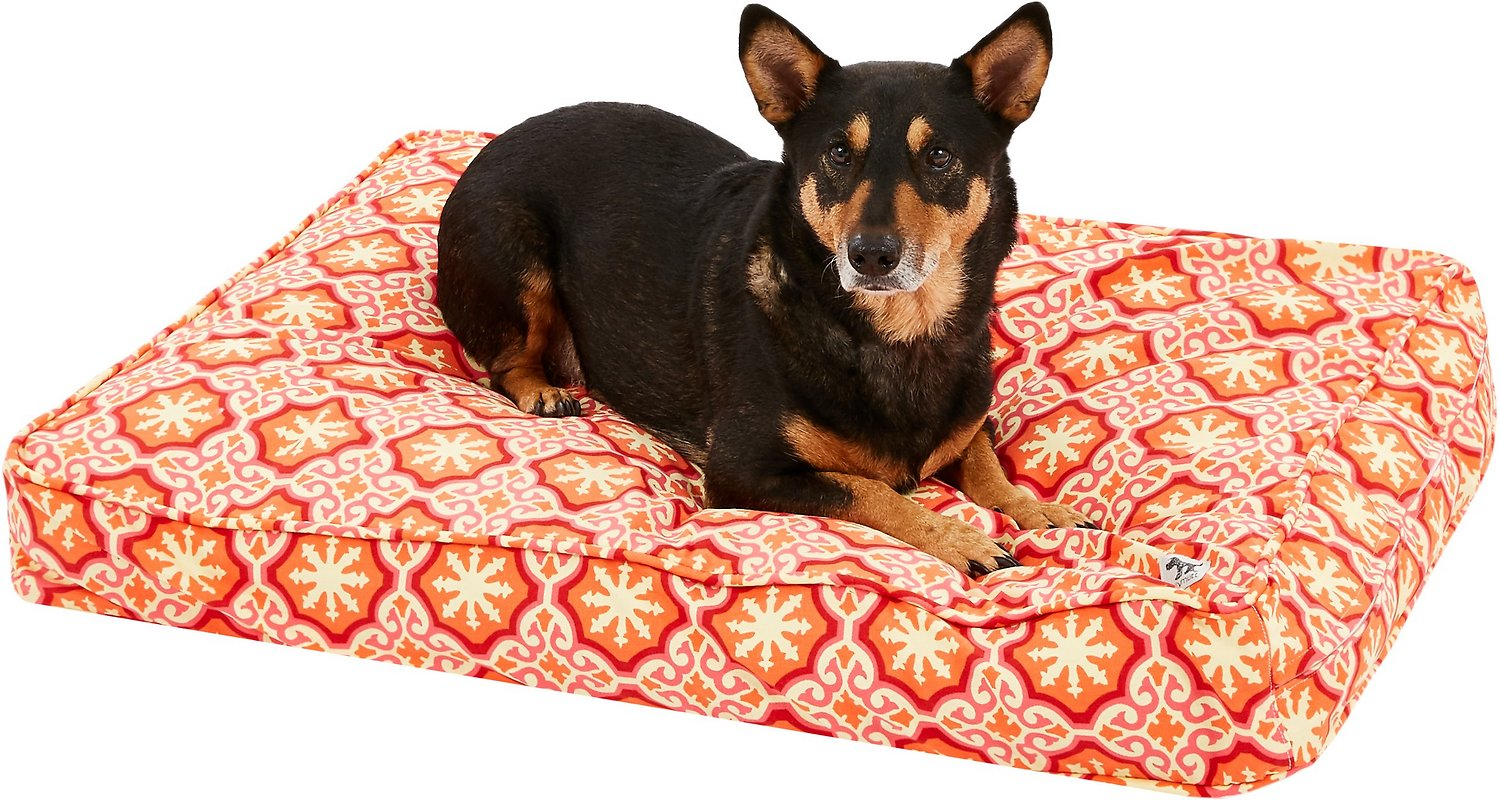 Molly mutt papillon square dog duvet cover mediumlarge chewy video nvjuhfo Image collections