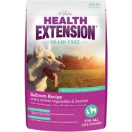 Health Extension Grain-Free Salmon Recipe Dry Dog Food, 10-lb bag
