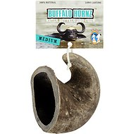 QT Dog Buffalo Hornz Water Buffalo Horn Dog Treat, Medium