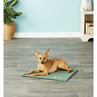 The Green Pet Shop Self-Cooling Pet Pad Cover, Medium/Large