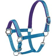 Tough-1 Nylon Padded Halter with Satin Horse Hardware, Turquoise, Yearling