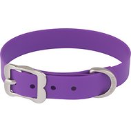 Red Dingo Vivid PVC Dog Collar, Purple, Medium