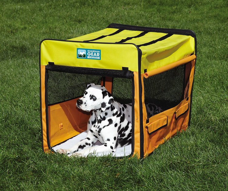 Guardian Gear Collapsible Dog Crate Large Orange Yellow