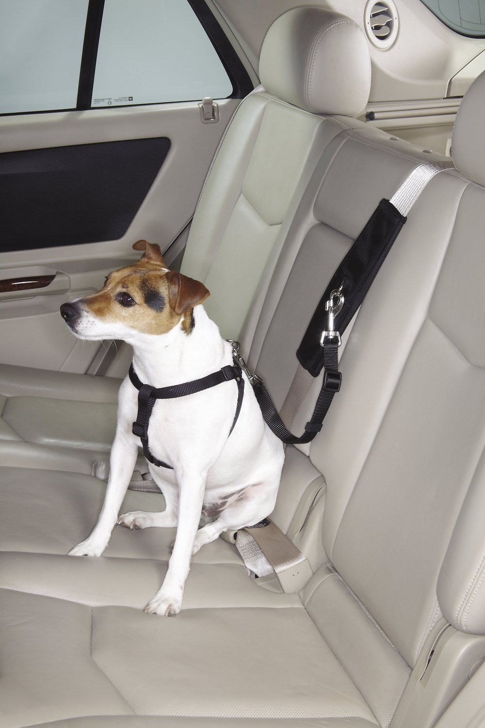Pet Seat Belt >> Guardian Gear Ride Right Seat Belt Connector For Dogs Black Chewy Com